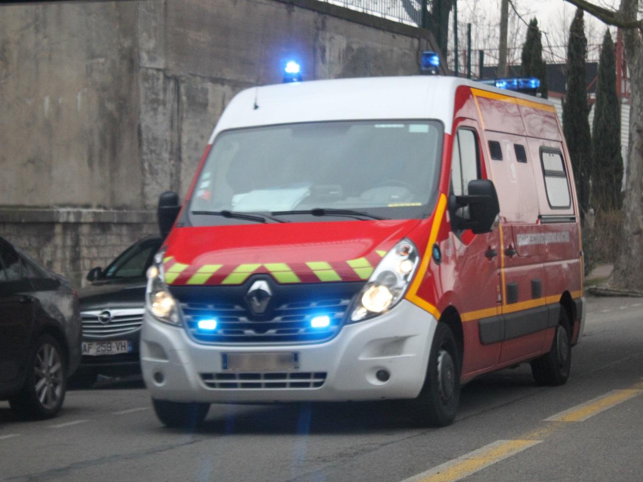 Un chien mord un enfant au visage près de Lyon