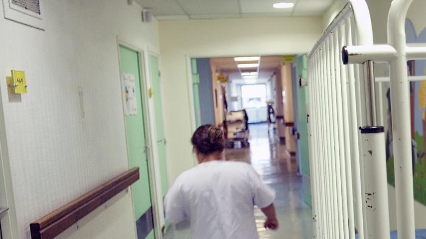 Rhône : un cas de rage diagnostiqué chez un enfant de 10 ans