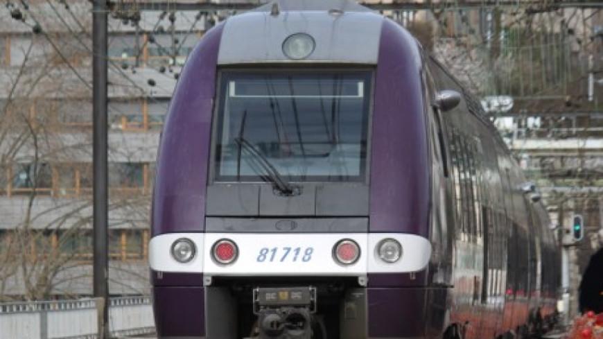 Perturbation du trafic des TER entre Lyon et Saint-Étienne !