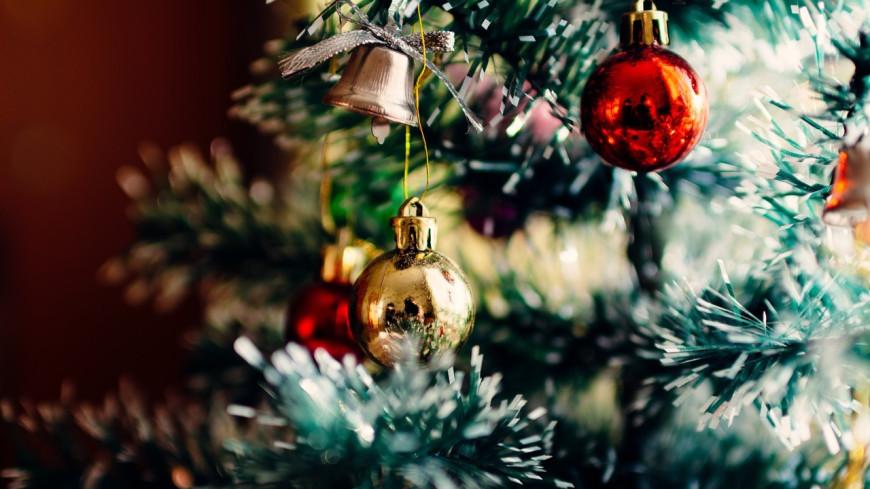 Les Jonas Brothers : leur titre de Noël