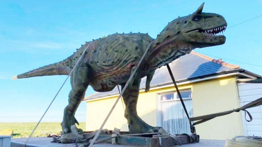 INSOLITE  : Il commande par erreur ... un dinosaure de plus de 6  mètres !