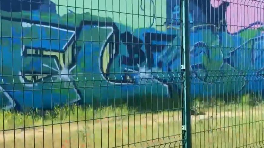 Une cagnotte lancée après des tags sur la fresque en hommage aux soignants à Lyon