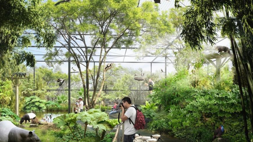 Une incroyable forêt asiatique fera son apparition au parc de la tête d'Or !