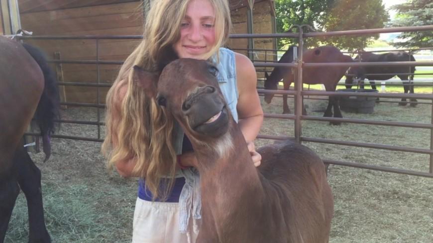 Ce cheval souri, ravit des caresses qu'il reçoit !